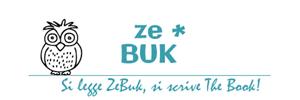 logo-zebuk-300x100